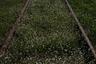 Железнодорожный был покрыт паутиной железных дорог, однако после кризиса 90-х, все они были закрыты.