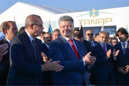 Реджеп Эрдоган и Петр Порошенко