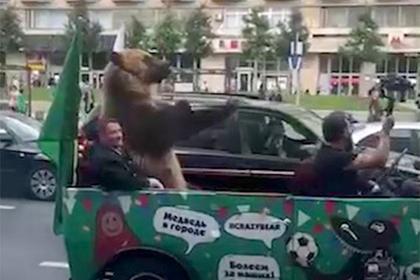 Полиция заинтересовалась медведем из кабриолета с Тверской