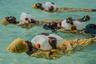 Вся жизнь архипелага Занзибар сосредоточена вокруг моря, но большинство местных девушек не учатся плавать. Виной тому консервативная исламская культура и полный запрет на ношение традиционных купальников. При этом уровень смертности от утопления на африканском континенте является самым высоким в мире.  <br> <br>  Проект Panje (с суахили переводится как «большая рыба») в течение последних нескольких лет обучает женское население Занзибара плаванию. На снимках фотографа Анны Бойазис — уроки новоиспеченных купальщиц.