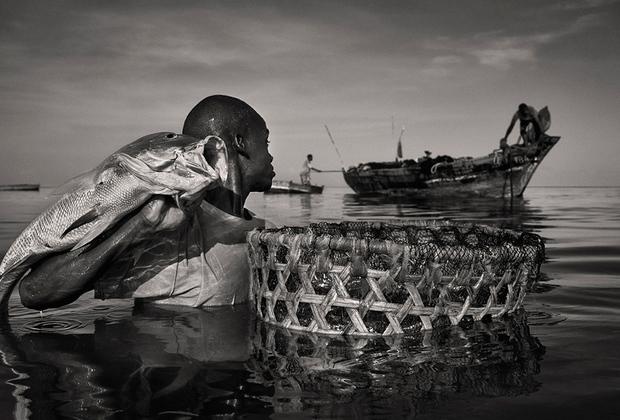 Возможно, сейчас мы являемся свидетелями воплощения последних рыболовецких и парусных традиций, которые оставались практически неизменными на протяжении тысячи лет. Продолжению прекрасной эпохи африканской торговли мешают увеличение численности населения, изменение погодных условий, а также недавнее открытие огромных газовых месторождений в этой местности.