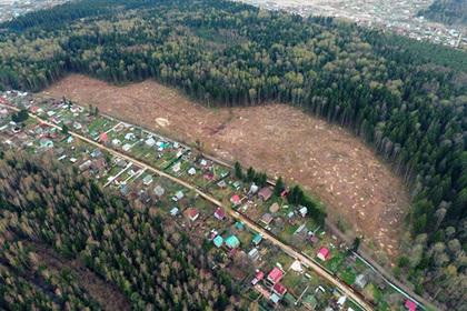 Свыше 700 многодетных семей получили землю в Подмосковье