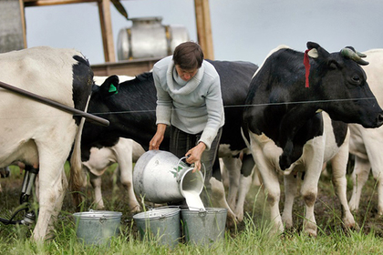 Российская Федерация отменила ограничения напоставки молока из Республики Беларусь