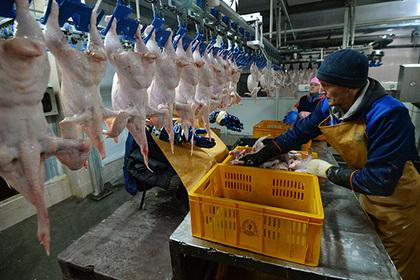 Минсельхоз Казахстана запретил ввоз продукции 36 русских птицефабрик