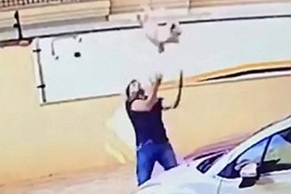 Бразилец поймал упавшую с девятого этажа собаку