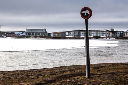 Российской Арктике предрекли роль нового международного хаба для дата-центров