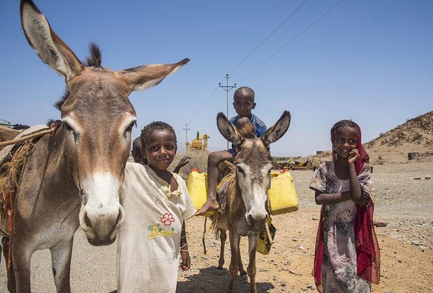 Сейчас большинство населения Эритреи составляют представители народностей тиграи (55 процентов населения) и тигре (30 процентов), но в пустынных районах живут в основном бедуины. Их жизнь мало изменилась за последние 100 лет —это самые бедные и неразвитые районы страны, что не мешает детям радоваться жизни.