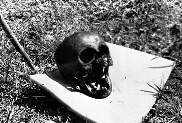 Череп, найденный писателем Гелием Рябовым и идентифицированный им как череп Николая II Романова