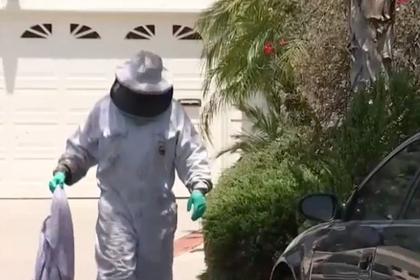 Американка оказалась в коконе из пчел и чуть не умерла