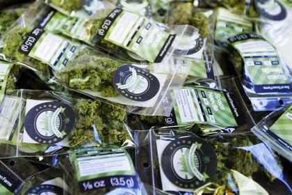 В Мексике легализуют марихуану ради борьбы с наркомафией