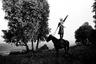 «Золото купит четыре жены, конь же лихой не имеет цены: он и от вихря в степи не отстанет, он не изменит, он не обманет», — говорил Казбич словами Михаила Лермонтова в «Герое нашего времени».