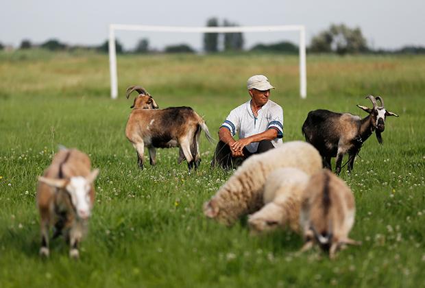 Украинский фермер