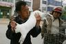 Животные в Китае практически приравниваются к неодушевленным предметам. Отправить кролика по почте или пнуть подвернувшуюся на пути кошку — обычное дело.