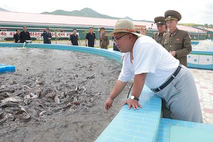 Ким Чен Ын посмотрел на сомов на «невиданной ферме»