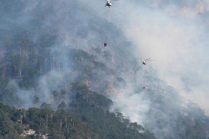 Десятки гектаров горящего леса в Крыму сняли на видео