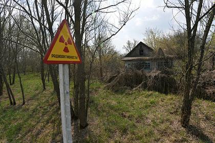 Блогер рассказал малоизвестные факты об ужасах Чернобыля