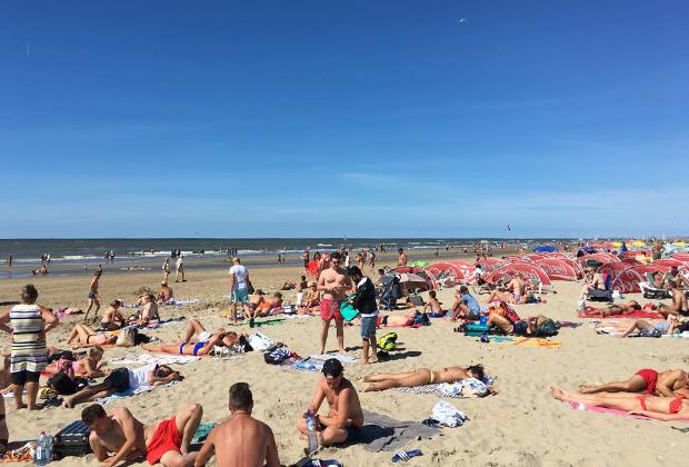 Пляжный сезон в Голландии. Кстати, за чистоту воды тут такие налоги, что можно спокойно купаться не только в озерах, но и каналах