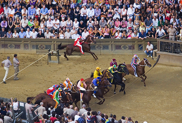 Старт гонки 2008 года. Пространство, в котором расположены лошади на старте, с двух сторон ограничено канатами, но жокеи все равно умудряются использовать различные тактики.