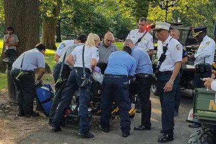 В американском парке нашли около 50 пострадавших от передозировки наркотиками