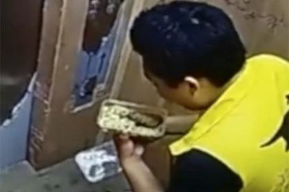 Поедающий суп клиента курьер попал на видео