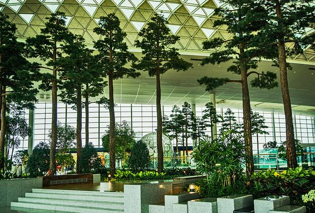 Со дня своего открытия в 2001 году воздушная гавань Сеула аэропорт Инчхон регулярно попадает в списки самых комфортных аэропортов мира. Одна из его особенностей — живые растения в залах. На фото— ботанический сад, расположенный в Терминале 2.