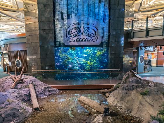 Ванкувер —один из самых богатых городов Канады. Успешных канадцев привлекает мягкий климат и прекрасная экология. Подчеркивает это и местный аэропорт, который щеголяет огромным аквариумом и декором в стилистике местных индейских племен.