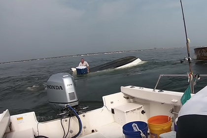 Кит перевернул рыбацкую лодку