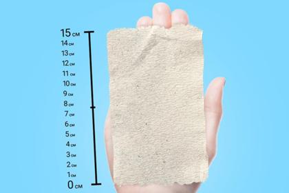 Россиянам посоветовали сворачивать туалетную бумагу для экономии