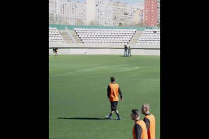 Месси прокинул мяч между ног журналиста ударом с другого конца поля
