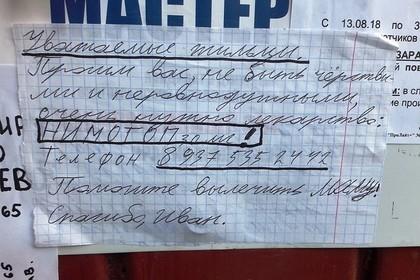 «Помогите спасти маму!» ВВолгограде увидели объявления, разбивающие сердце