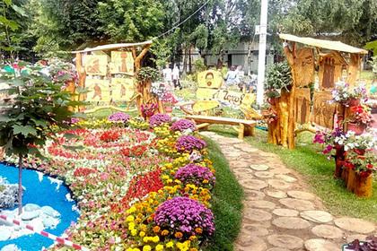 Свыше 40 тысяч растений высадят на фестивале цветов в Подмосковье