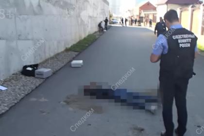Опубликовано видео с мест нападения детей на полицейских в Чечне
