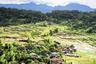 Двухдневный маршрут к затерянным в джунглях деревням провинции Калинга — лучшее, что могут предложить  Филиппины любителям трекинга и хайкинга. Природные красоты, рукотворные террасы с рисовыми полями и возможность попробовать аутентичную местную кухню делают его популярным с 1960-х годов.