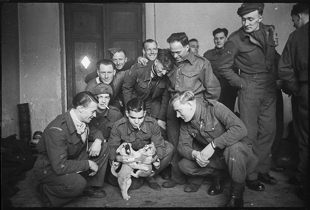 Англичане, освобожденные из немецкого плена краснознаменцами, забавляются с собаками, вывезенными из Германии. Дата неизвестна.