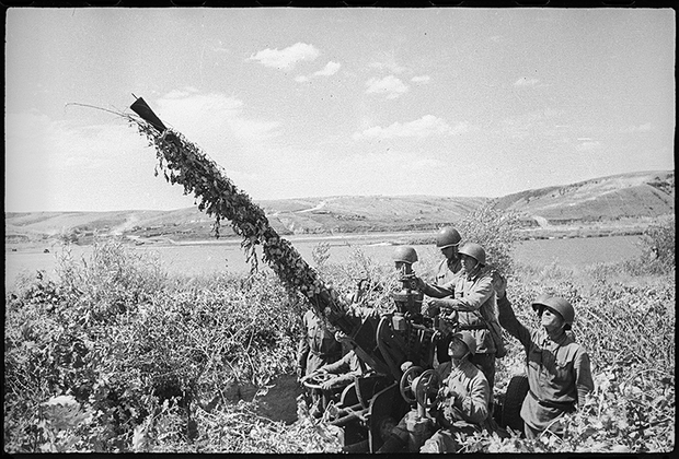 На Дону. Сталинградский фронт. 1942 год.