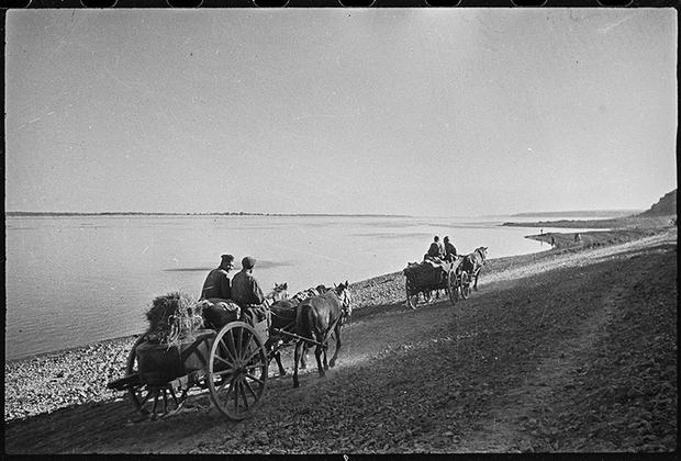 Подвоз боеприпасов. Под Сталинградом, 1942 год.