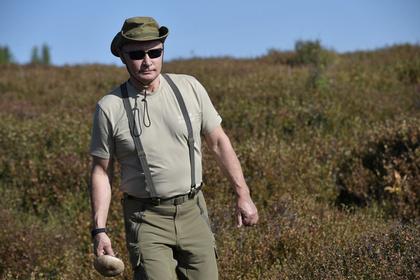 Объяснена популярность Путина на Западе