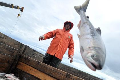 Россия одобрила международный запрет ловли рыбы на Северном полюсе