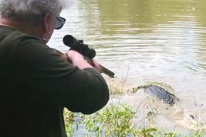 Мстящая бабушка выследила обидевшего ее аллигатора и убила его одним выстрелом