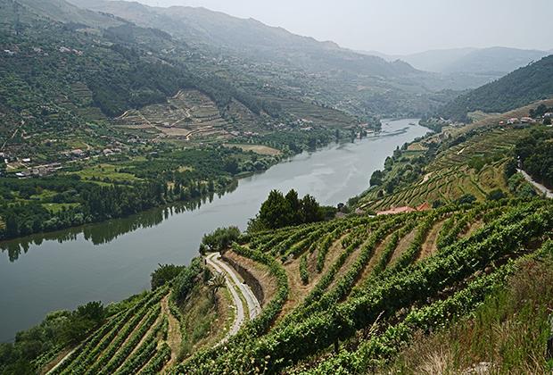 Усыпанная виноградниками долина реки Дуэро