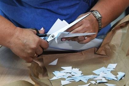 Объяснен недопуск «яблочников» на выборы во Владимирской области