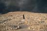 Серия Элис Мартинс посвящена нынешней жизни горожан, вернувшихся в разрушенные боевиками города. На снимке изображено кладбище в иракском городе Кайяра. Когда город контролировался сторонниками «Исламского государства» (ИГ, запрещена в России), они уничтожили все надгробия, которые сочли «неисламскими».