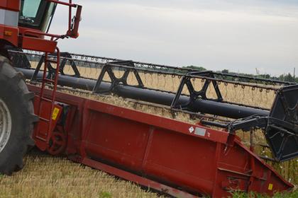 Более 370 тысяч тонн зерновых собрали в Подмосковье