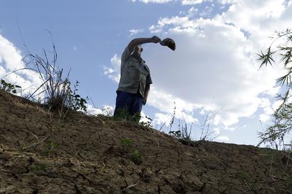 Лавров отшутился на вопрос о переманивании фермеров из ЮАР