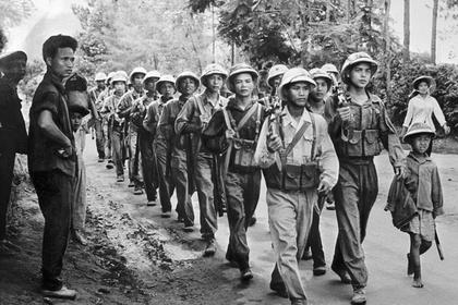 В тропических зарослях Вьетнама отыскали советского летчика