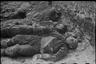 Южный фронт, декабрь 1942 года. В освобожденной от фашистов Россоши.
