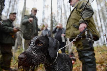 Сезон охоты на копытных животных стартовал в Подмосковье