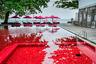 Еще один экзотический вариант — кроваво-красный бассейн в Таиланде, в курортном отеле The Library на острове Самуи. Вода не крашеная — потрясающий цветовой эффект создается за счет мозаики в оранжевых, желтых и красных тонах. Плюс красные зонтики по периметру — и вот он, бассейн из фильмов ужасов.