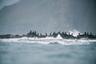Когда экспедиция Беринга высадилась на Командорских островах, там водилось несколько видов баклана. Путешественники дали им названия: берингов баклан (по-латыни этот вид называется Phalacrocorax pelagicus), стеллеров баклан (Phalacrocorax perspicillatus, названный по имени Георга Вильгельма Стеллера, первым его описавшего), и краснолицый баклан (Phalacrocorax urile). Пернатые хищники гнездятся на скалах и охотятся в океане.