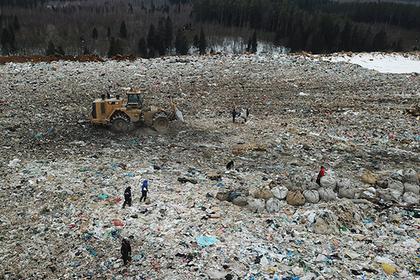 Шесть мусорных полигонов рекультивируют в Подмосковье